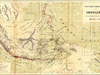 Alfred R. Wallace dan Flores; Catatan Yang Terlupakan