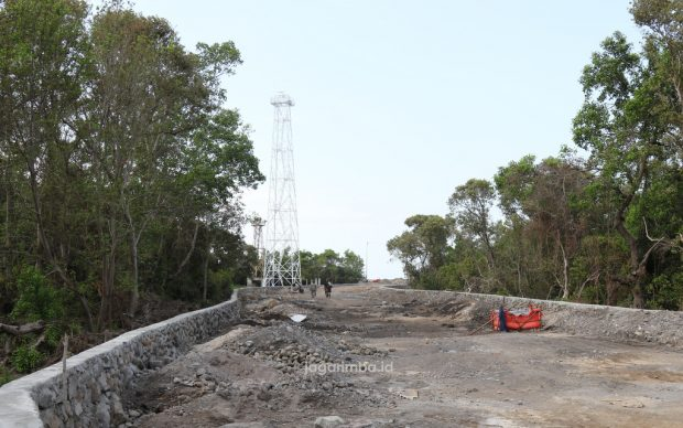 Stop Berdebat! Mangrove di Muara Borong Sudah Sepantasnya Dihabisi